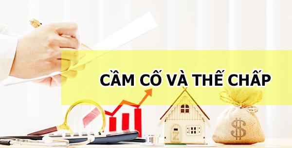 cam-co-va-the-chap-giong-khac-nhau-nhu-the-nao